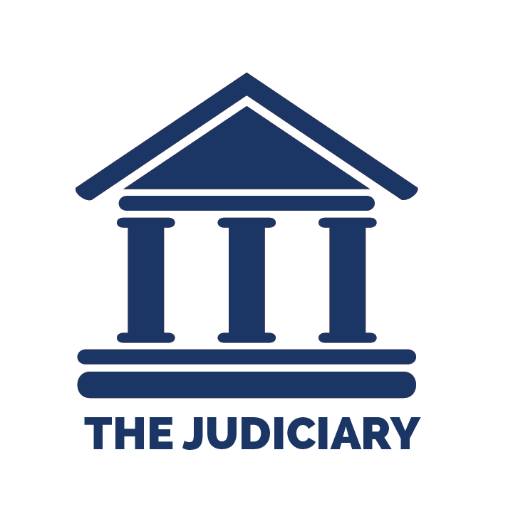 Diagnosing corruption within judicial systems